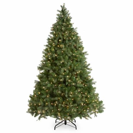 aca3743cb69 National Tree Company Downswept Douglas Fir Medium Pre-lit Christmas Tree